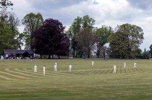 County Cricket Returns